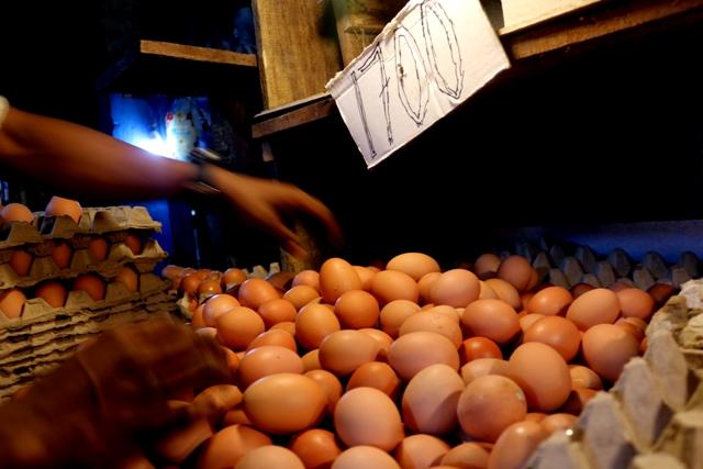 Harga Telur di Ambon Melonjak