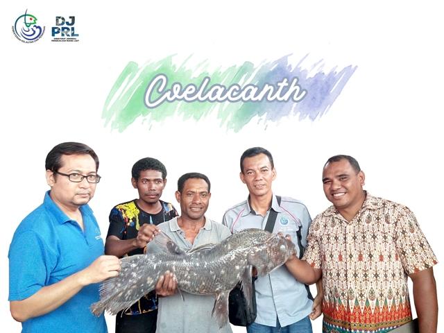 Ikan Purba Raja Laut Tertangkap Pancing Nelayan