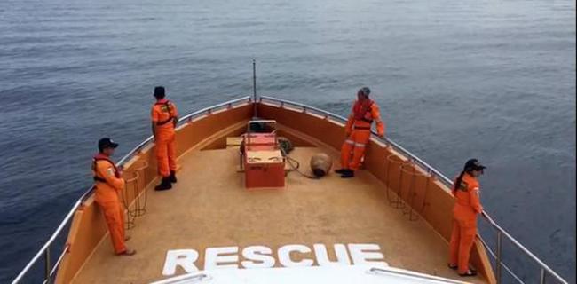 Sempat Hilang Kontak, Dua Nelayan Asal Desa Sole Ditemukan Selamat di Buru Utara
