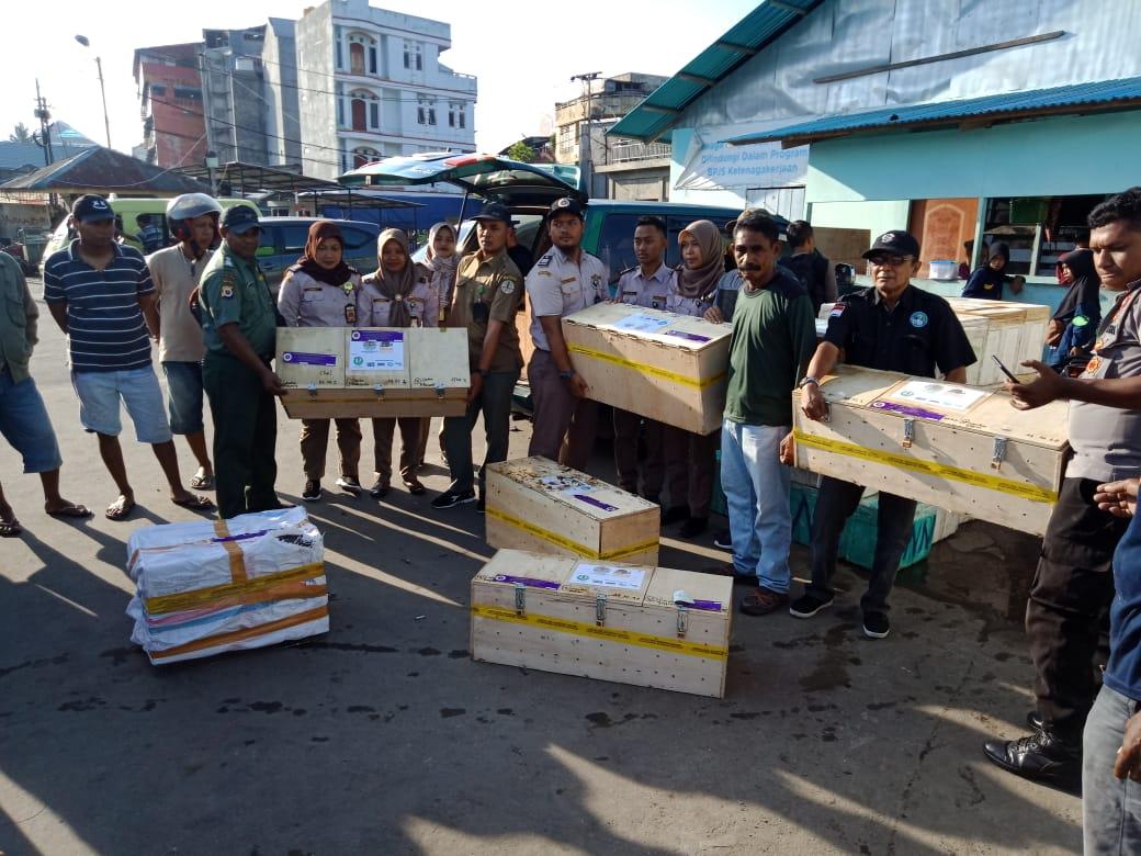 16 Satwa Liar Endemik Dikembalikan ke Maluku