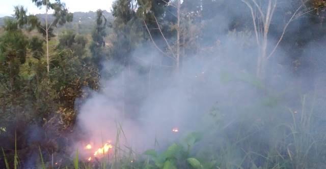 Diduga Akibat Cuaca Panas, Lahan di Kusu-kusu Sereh Terbakar