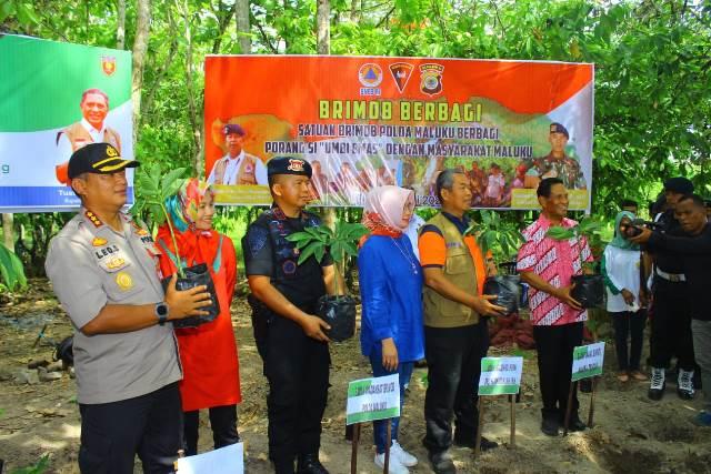 BNPB-Brimob Polda Maluku Tanam Ribuan Anakan Porang