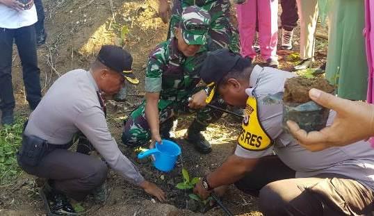 Hijaukan SBT, Personel TNI – Polri Tanam 3.000 Anakan Pohon