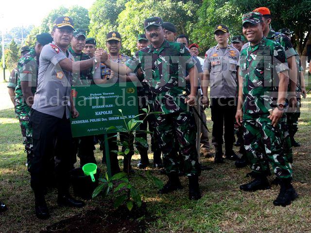 Ini Anakan Pohon Yang Ditanam Panglima TNI dan Kapolri di Lantamal Ambon