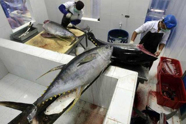 BPS: Ekspor Maluku November 2019 Didominasi Tuna & Kepiting