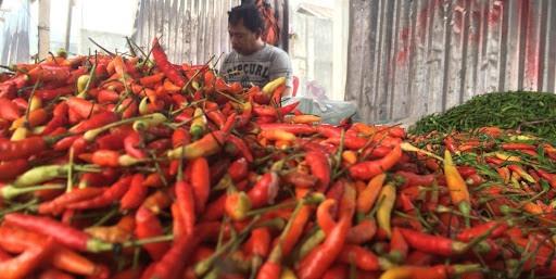 BI: Inflasi Maluku Januari 2020 Meningkat
