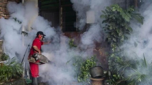 Dinkes Kota Ambon Lakukan Fogging di Lokasi Rawan DBD