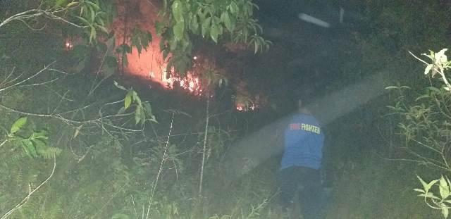Hutan Dusun Siwang Ludes Dilalap Api