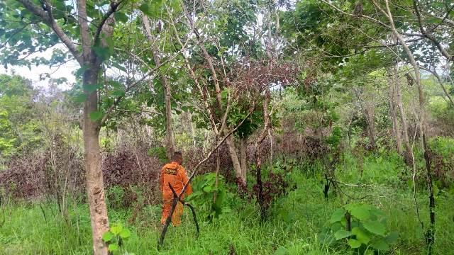 Tim SAR Belum Temukan Penambang Yang Hilang di Buru