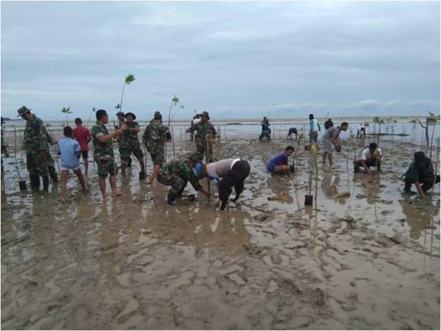 TNI – Polri Bersinergi Tanam Mangrove di SBT
