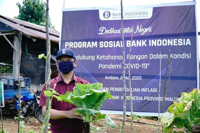 BI Maluku Gandeng Dinas Pertanian Jaga Pasokan Sayuran