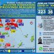 Update Covid-19 Di Maluku 31 Mei: PDP Bertambah, ODP Turun