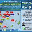 Update Covid-19 Di Maluku 25 Juni: Total Kasus Bertambah Jadi 684