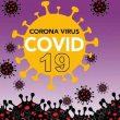 Pasien Covid-19 Yang Sembuh Di Maluku Terus Bertambah