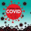 6 Pasien Covid-19 Di Maluku Sembuh