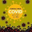 Bertambah 15 Kasus Positif Covid-19 Di Maluku, Ini Sebarannya