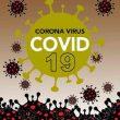 Lima Pasien Covid-19 Di Maluku Sembuh, Ini Penjelasan Gugus Tugas