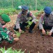 Wujudkan Ketahanan Pangan, Brimob Maluku Manfaatkan Lahan Kosong