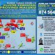 Update Covid-19 Di Maluku 12 Juli: Pasien Sembuh Terus Bertambah