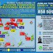 Update Covid-19 Di Maluku 10 Juli: Total 509 Pasien Sembuh