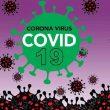 Update Covid-19 Di Maluku 6 Juli: Tambah 10 Kasus Dari Tual, Malra & Ambon