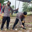 Launching Kampung Tangguh Di Ambon, Ribuan Benih Jagung Ditanam