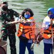 Danlantamal Ambon Panen Ikan Kakap Putih