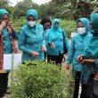 Ketua TP-PKK Maluku: UP2K Harus Manfaatkan Koperasi
