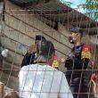 Brimob Maluku Ajak Warga Dobo Patuhi Protokol Kesehatan