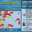 Update Covid-19 Di Maluku 26 November: Ada Lonjakan 104 Kasus Baru, 87 Diantaranya Di Tanimbar
