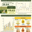 BPS: Luas Panen Padi Tahun 2020 Di Maluku Diperkirakan 29,64 Ribu Hektar