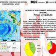 Sepekan Terakhir, BMKG: 59 Gempa Terjadi Di Maluku