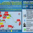 Update Covid-19 Di Maluku 6 Desember: Tambah Lagi 45 Kasus Baru, 38 Diantaranya Berada Di Tanimbar