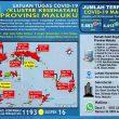 Update Covid-19 Di Maluku 28 Desember: 92 Pasien Sembuh, 83 Diantaranya Di Tanimbar