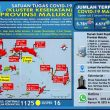 Update Covid-19 Di Maluku 2 Januari 2021: 33 Pasien Sembuh