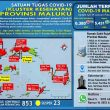 Update Covid-19 Di Maluku 29 Januari 2021: Tambah 19 Kasus Baru Dari Ambon, Buru Selatan & Tual