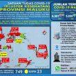 Update Covid-19 Di Maluku 3 Februari 2021: Tambah 20 Kasus Baru & 13 Pasien Sembuh