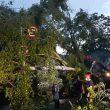 Pohon Tumbang Di Depan RST Ambon, PLN Siaga Pulihkan Pasokan Listrik