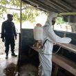 Brimob Maluku Semprotkan Disinfektan Cegah Penyebaran Covid-19
